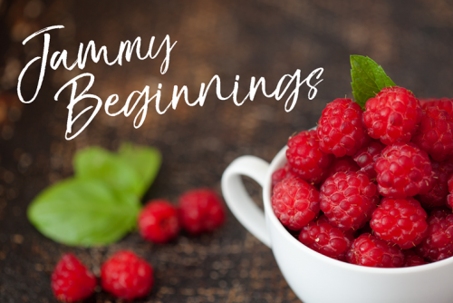Jammy beginnings course basics